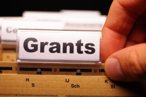 Financial Literacy Grants